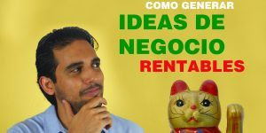 ideas de negocio gato chino